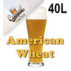 Kit Para Produzir 40 Litros de American Wheat do CANAL DO CHOPP - 1D BJCP